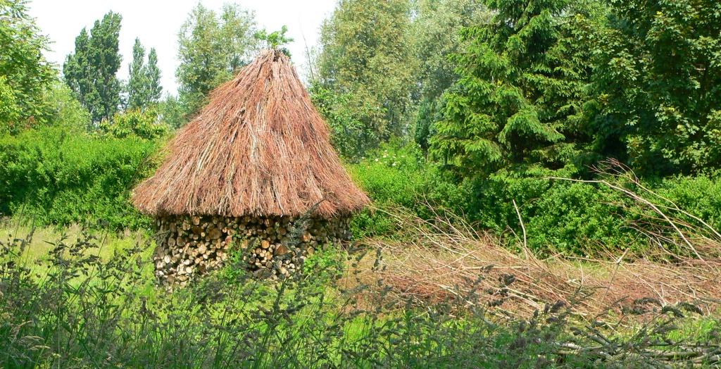 hut-2-1542201